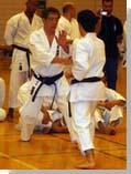 семинар Х.Каназава